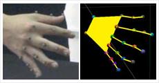 手指運動の3次元解析