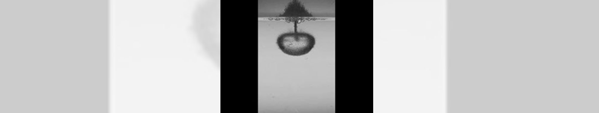 ハイスピードカメラによる水中での爆発現象の可視化